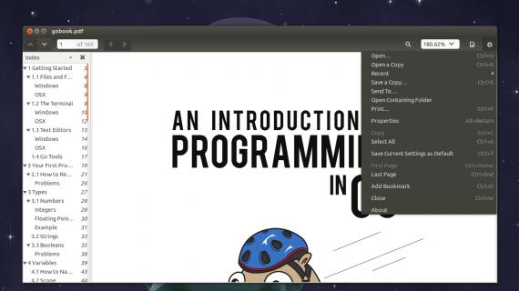 evince ubuntu 13.10 beta