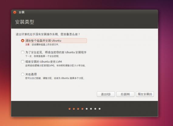 ubuntu13.10install03leixing