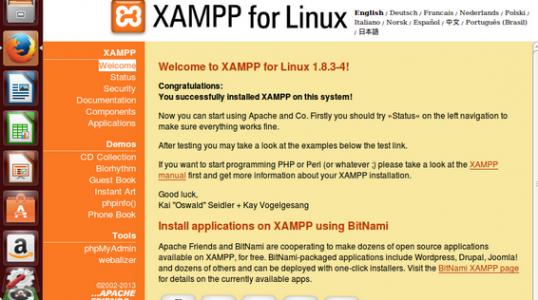 流行的 Linux 系统用户如何安装 XAMPP 1.8.3.4 服务