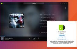 Deepin Music现在可作为Ubuntu上的Snap应用程序使用