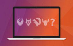 下一个发行版本 Ubuntu 17.10 代号猜想