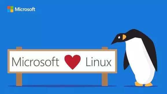 SQL Server 首次登陆 LinuxSQL Server 首次登陆 Linux